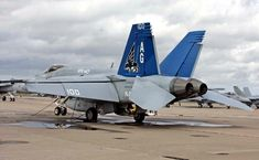 VFA-143 Pukin Dogs