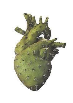Heartcactus needs flowers                                                                                                                                                                                 More