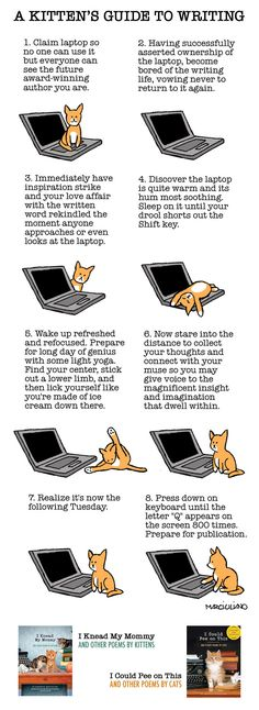 A Kitten's Guide to Writing