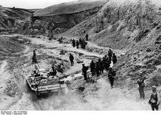 September 1942   --Looking downstream in Dolgii Ravine.  (Jason Mark identified this).