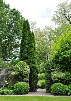 I like the different shapes and heights in this image. The Dewittville garden will not be so formal, but this is an inspiration for creating variations in the landscaping. (garden design by Carolyn Mullet)