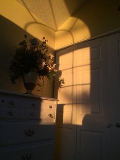 aesthetic golden beige hour brown shadow light yellow sunlight sun chayana ig