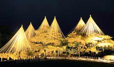 秋|四季の風景|兼六園 #gardens #japanesegarden #日本庭園