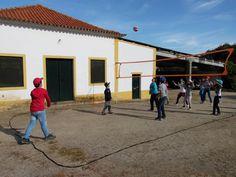 Último dia da Semana de Campo 2015.  #colegioalfragide #amadora #portugal #semanadecampo2015