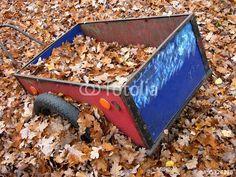 Handkarre mit Seitenwänden in Rot und Blau im tiefen Laub des Herbstes am Gut Wilhelmsdorf