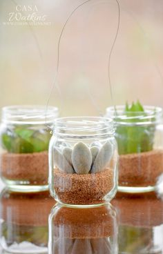 Recycle those baby food jars into World Market inspired hanging plant jars