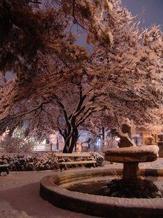 Winter Wonderland / Mangelli