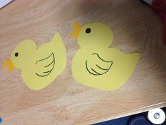 Duckling door decs