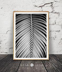 Palm blad afdrukken foto van de Plant zwart-wit Wall door LILAxLOLA