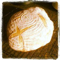 5 minute bread
