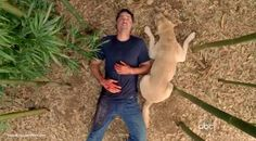 This scene made me cry!! #LOST
