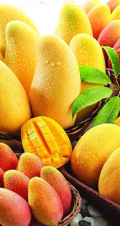 Mangoes are delicious