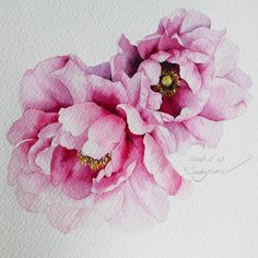 🎗Today is a gift! Watercolor Illustration, Watercolour Painting, Watercolor Flowers, Painting & Drawing, Botanical Drawings, Botanical Art, Korean Painting, Art Drawings For Kids, Flower Art