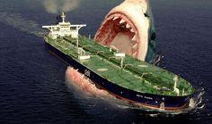 O Tubarao Megalodon Vive Ainda A Prova De Que Megalodon Nao Esta Extinto Existe Um Tubarao De 60 Pes Pre Histo Mysterious Events Megalodon Shark Megalodon