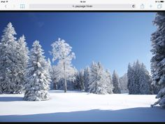 Superbe Winter Scenery, Mother Nature, Snow, Outdoor, Outdoors, Winter Landscape, Winter Scenes, Outdoor Living, Garden