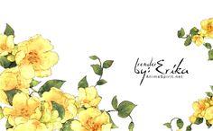 flower render - Pesquisa Google
