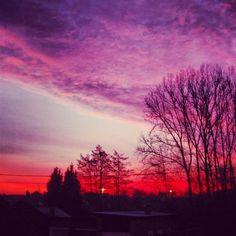 winter morning sky by Lauren