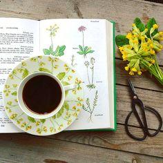 """~ """"livet är som en bok. Du kan inte ändra de sidor som redan är skrivna, men du kan starta på ett nytt kapitel"""". • önskar er en fin fredag! #fargerikehjem @fargerikehjem #adoremycupofcoffee #cupoftheday #gullvivor #blommor #blomster #flowers #flora #feelfreefeed #boligpluss #boligdrøm #vackrahemsverige #vackrahem #vakrehjemoginteriør #vakrehjem #unike_hjem #unikingenannanlik #skönahem @interior_magasinet @homes_norway @finahem @interior_and_living @mynorwegianhome #gammeldags #landligstil…"""