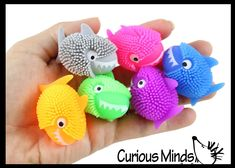Classroom Prizes, Novelty Toys, Fidget Toys, Treasure Boxes, Goodie Bags, Toy Boxes, Shark, Party Favors, Dinosaur Stuffed Animal