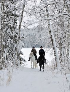 and he trotted alongside her, wishing the space and the cold between their saddles melted and warmed into something he couldn't name.