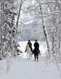 Beautiful winter ride!