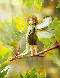 39 super Ideas for fantasy art fairies mythical creatures elves Fairy Dust, Fairy Land, Fairy Tales, Magical Creatures, Fantasy Creatures, Fantasy Kunst, Fantasy Art, Elfen Fantasy, Urbane Kunst