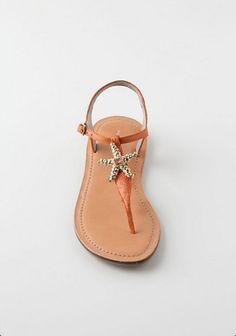 Sandal with starfish