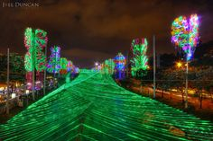 National Geographic calls Medellin one of the top 10 places in the world to see Christmas lights. Here is just a little example of why they gave that award. Christmas Past, Christmas Lights, Latin Travel, Innovative City, Festival Lights, Santa Fe, National Geographic, Night Life, Fair Grounds
