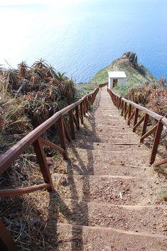 09-Rei-Garajau-Madeira