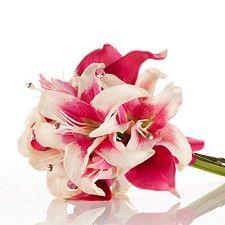 I love tiger lillies
