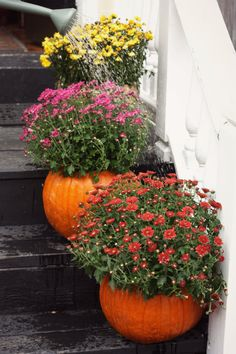 How To: Fall Pumpkin Planters | 17 Apart