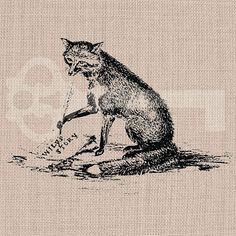 Vintage Fox Writing Digital Graphic Image No316 by TanglesGraphics, $1.00