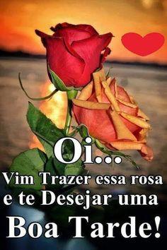Oi… vim trazer essa rosa e te deseja uma infinita chuva…