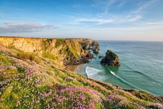 Buy Thrift at Bedruthan in Cornwall by flotsom on PhotoDune. Thrift in bloom on cliffs above Bedruthan Steps beach on the Cornwall coast near Newquay Towns In Cornwall, Cornwall Coast, Newquay Cornwall, British Beaches, British Travel, Summer Backgrounds, Luxury Travel, Travel Uk, Seaside Towns