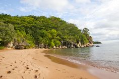 Kigoma is red earth and palm trees and emerald lake water. I've spent the past five days lounging on red beaches, hanging out with zebras, swimming in Lake Taganyika, getting caught in rainstorms, and exploring muddy roads with friends from Dar.