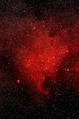 North America Nebula NGC-7000  from evansg