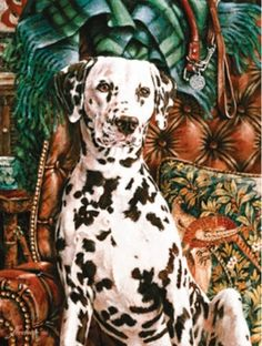 Dalmation Dog SunsOut 500 Piece Jigsaw Puzzle by Artist Thomas Rivers Lovelace, $12.50