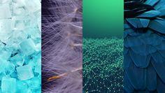 Dopasowując dane o pikselach do pobieranych obrazów, zespół analizy danych Shutterstock określił trendy w kolorach i projektach obowiązujące w 2015.