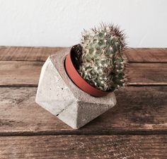 Baby Geometric Concrete Planter available at Housekeeping Store.