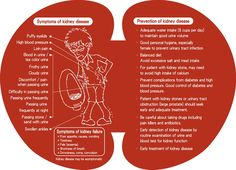 Image detail for -symptoms of kidney disease prevention of kidney disease