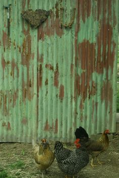 love the green and rust...chickens cute too...