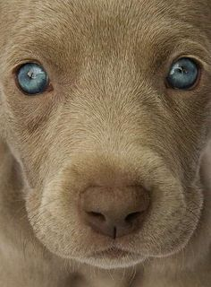 Beautiful eyes!