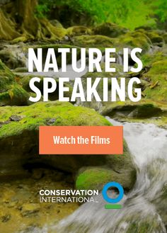 """Nature Is Speaking: Watch the Films 
