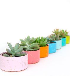 21 creative succulent container gardens you can buy or DIY, like this gold splatter succulent planter project.