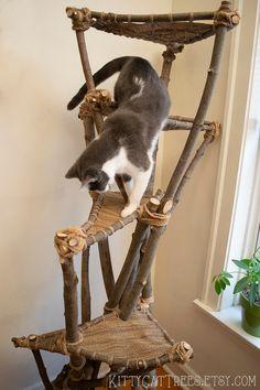 Natural Handmade Cat Tree - New Ideas Cool Cats, Cool Cat Trees, Cat Climbing Tree, Diy Cat Tree, Cat Playground, Cat Accessories, Handmade Accessories, Cat Room, Unique Cats