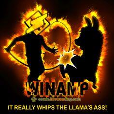 It really whips the llama's ass! Computer Jokes, Computer Science, Web Development, Software, Web Design, Programming, Ps, Comics, Coupon