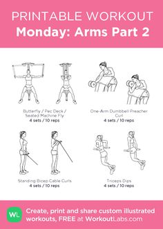 Monday: Arms Part 2 · WorkoutLabs Fit - Gym workout plan for women - Gym Workout Guide, Gym Workout Plan For Women, Gym Workout For Beginners, Monday Workout, Gym Workouts Women, Barbell Workout For Women, Gym Weights, Printable Workouts, Mental Training