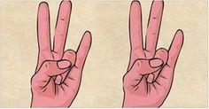 Você sabia que nossas mãos têm ligação direta com outras partes do corpo?É o que garantem a reflexologia e a medicina tradicional chinesa.