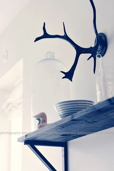 Love the shelf, I want this in my livingroom.