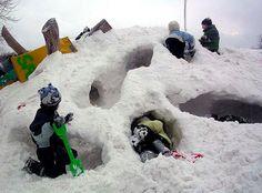 Frode Svane: Adventures in Snow Play - COMMUNITY FORUM